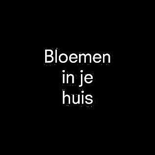 Bloemen in je huis| Julian Knol - Bloemist Apeldoorn