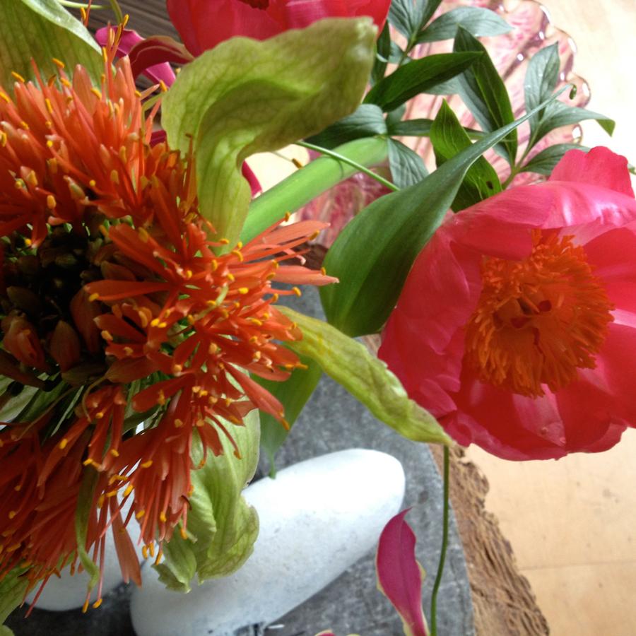 Bloemen in je huis | Vrolijke kleuren op de vaas