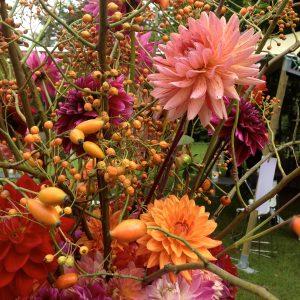 Bloemen en events | Najaarsarrangement dahlia's en bessen
