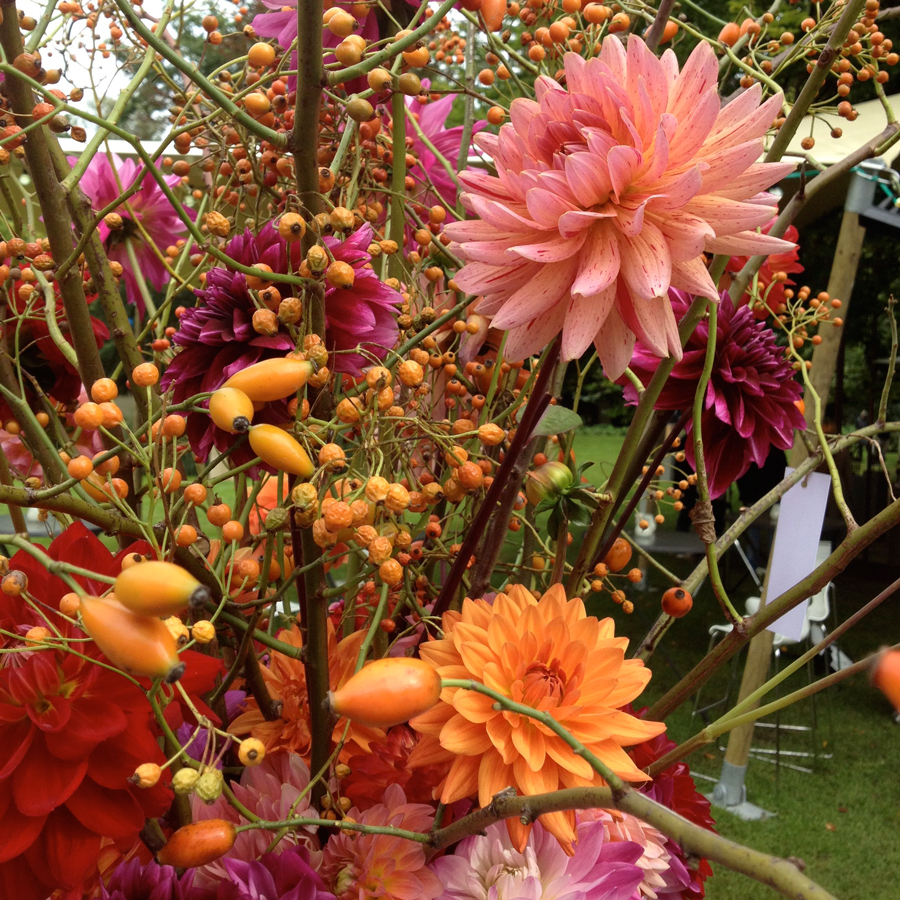 Bloemen en events   Najaarsarrangement dahlia's en bessen