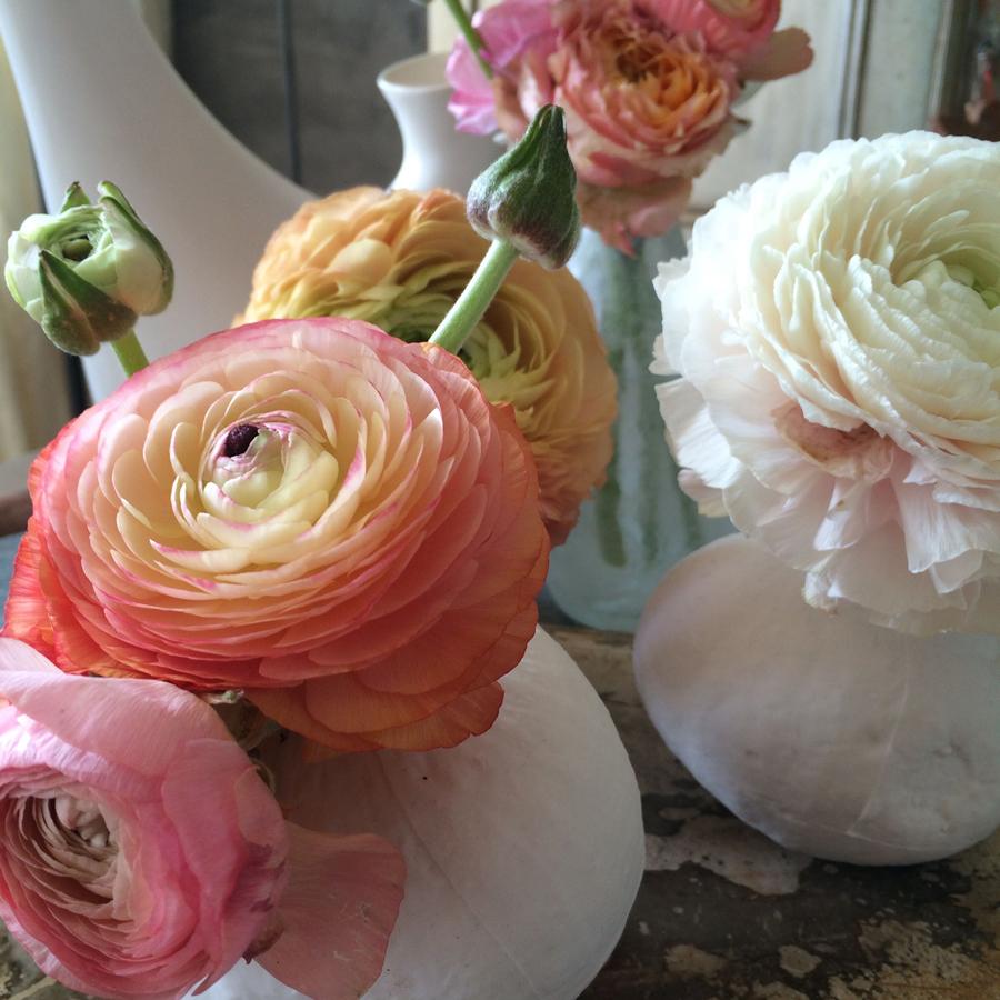 Bloemen in je huis | Ranonkels op kleine vaasjes