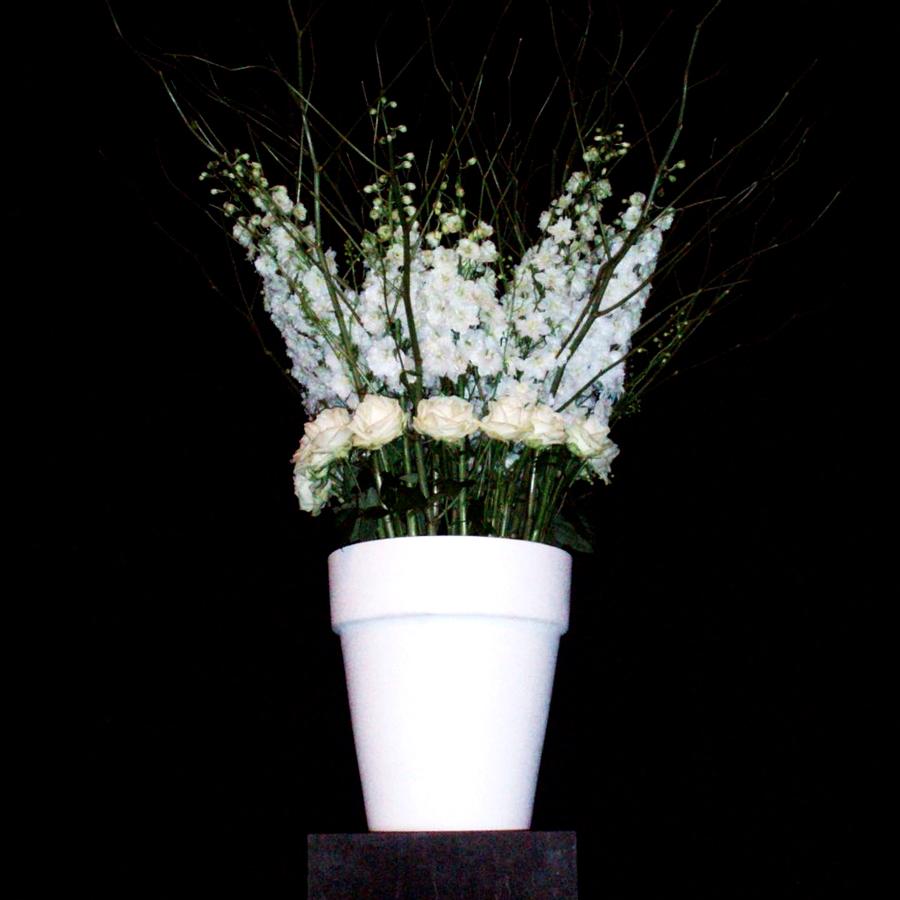Bloemen en events   Zwart-wit-eyecatcher