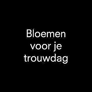 Bloemen voor je trouwdag | Julian Knol - Bloemist Apeldoorn